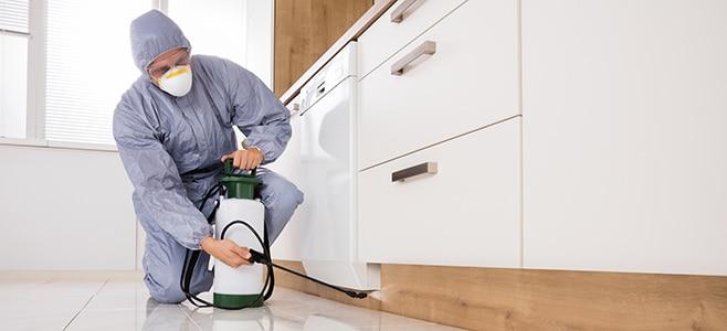 Pest control insurance