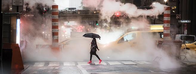 Commercial Umbrella Insurance for IT Professionals